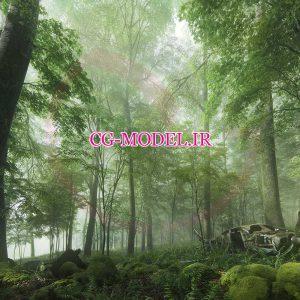 دانلود Archmodel vol 154 درخت و گیاه