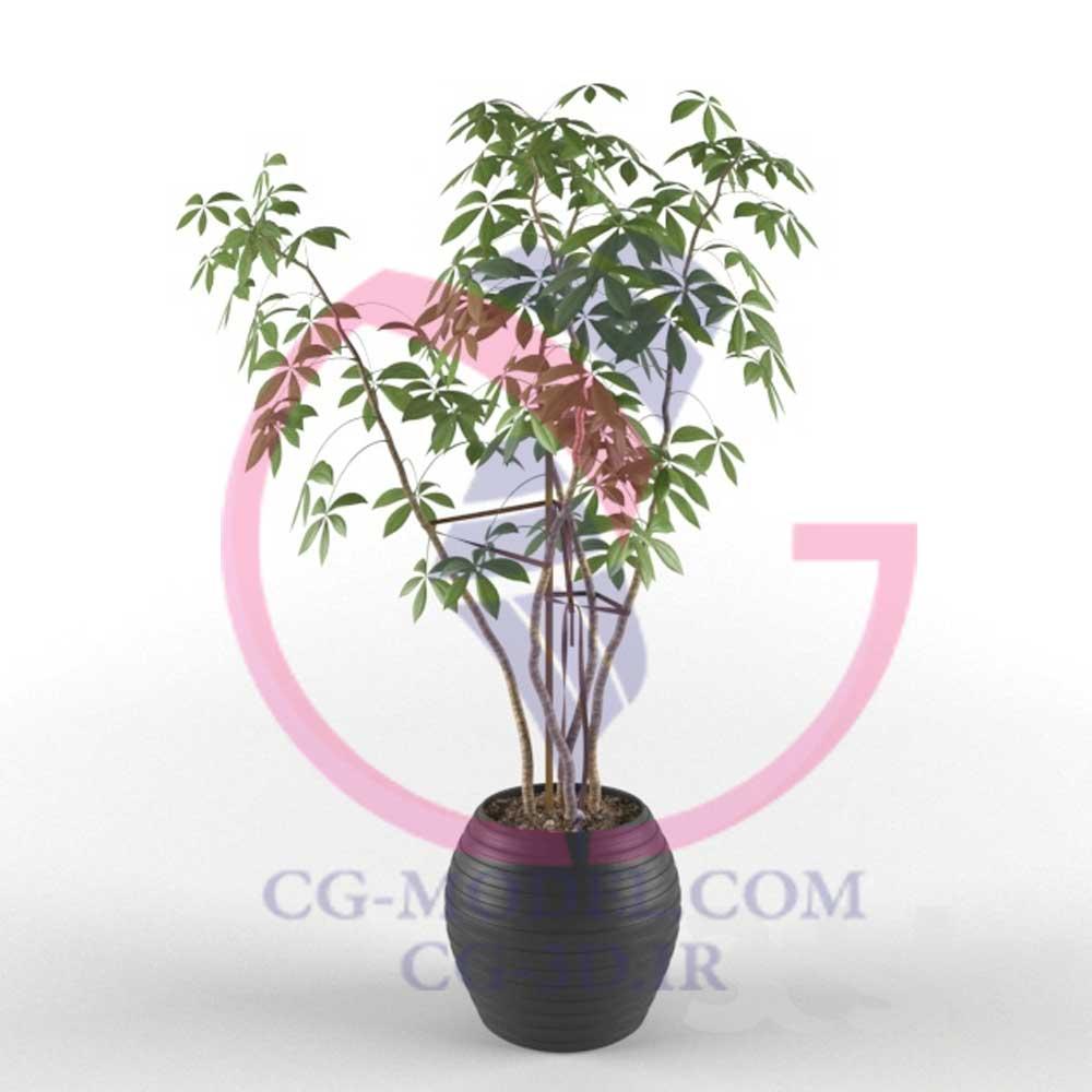 مدل سه بعدی گلدان گیاه