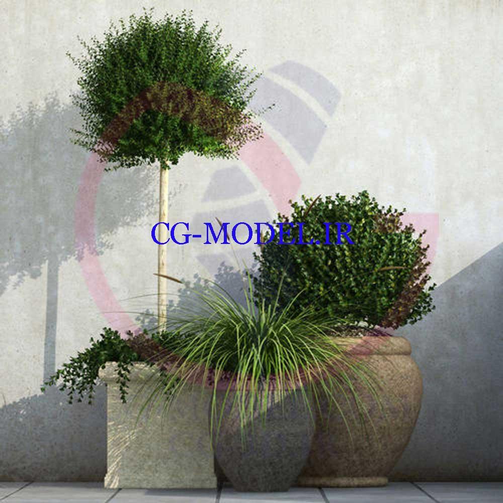 3 عدد مدل سه بعدی گلدان گیاه