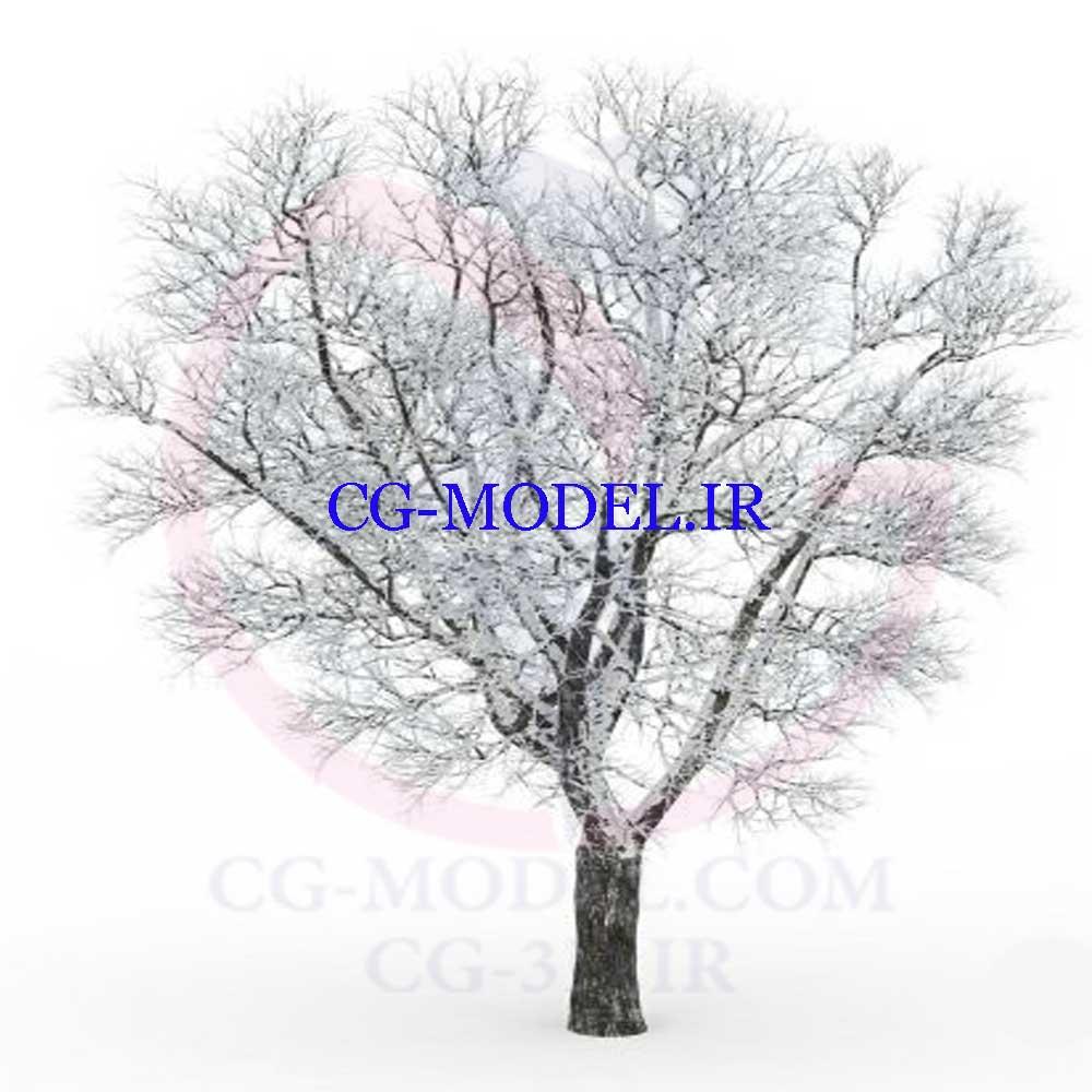 دانلود مدل سه بعدی درخت زمستانی