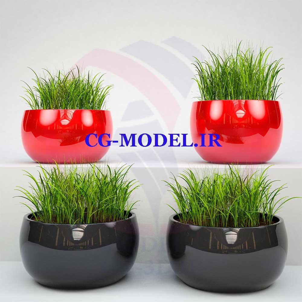 مدل سه بعدی سبزه