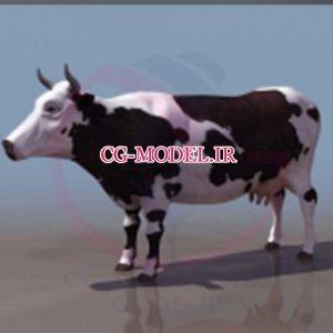 مدل سه بعدی گاو