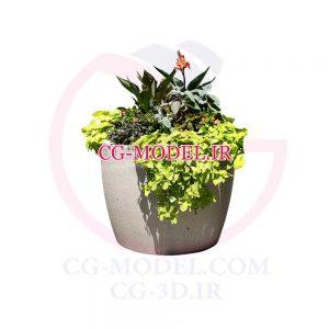 png گلدان گل