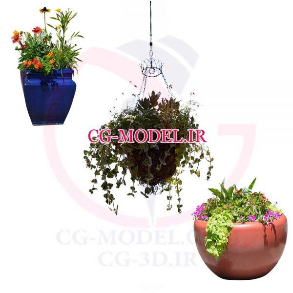png گلدان گل و گیاه