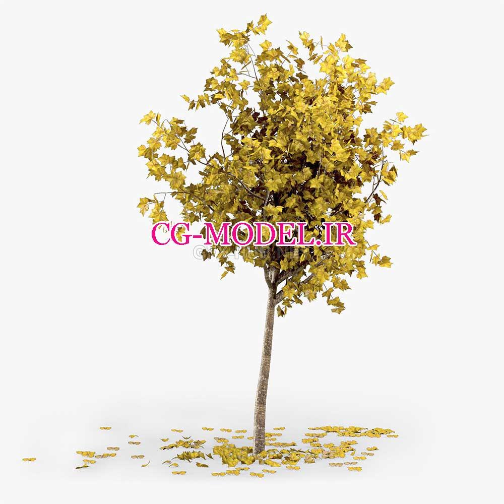 مدل سه بعدی درخت پاییزی