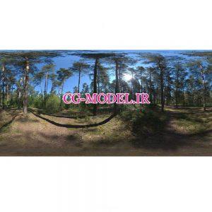 دانلود HDRI جنگل