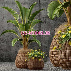 مدل سه بعدی گلدان حصیری گل و گیاه