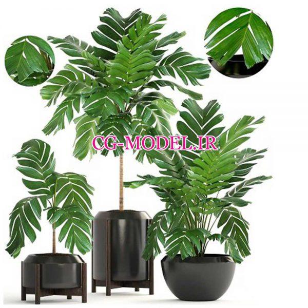 مدل سه بعدی گلدان گیاه (6)