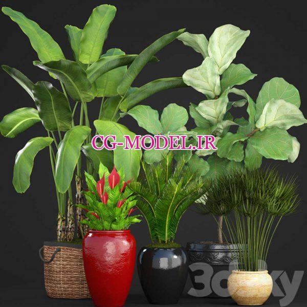 مدل سه بعدی گلدان گیاه (7)