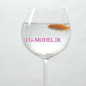 دانلود فوتیج تنگ ماهی