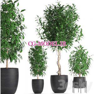 مدل سه بعدی گلدان گیاه (8)