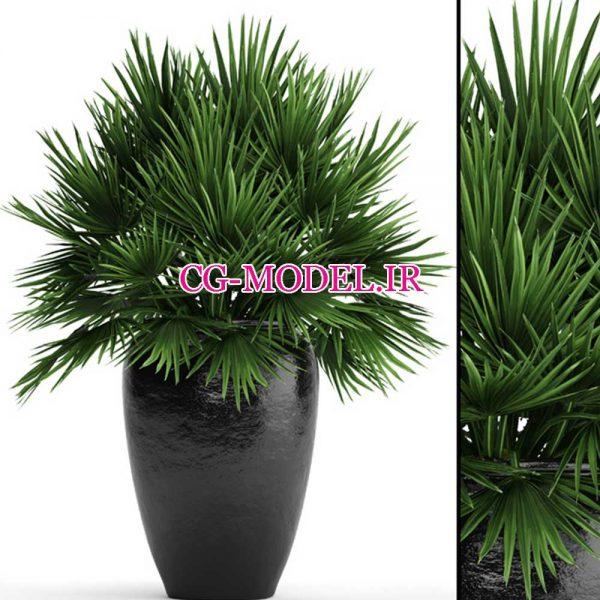 مدل سه بعدی گلدان گیاه (10)