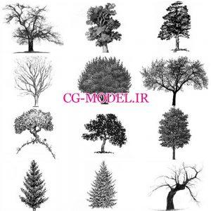 براش درخت (2)