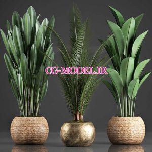 مدل سه بعدی گلدان گیاه (12)